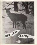 levy_redlady2